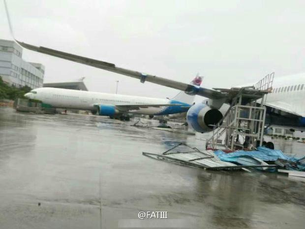 Máy bay Boeing 767 bị siêu bão thổi bay khỏi đường băng - Ảnh 3.