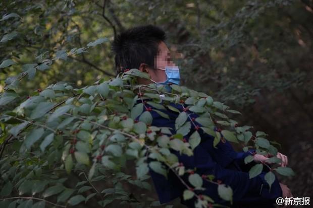 Những tình tiết bất ngờ trong vụ người phụ nữ bị hổ vồ trong công viên Bắc Kinh - Ảnh 6.
