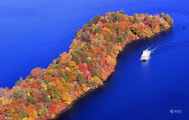 Những bức ảnh thiên nhiên tuyệt đẹp sẽ khiến bạn cảm thấy yêu mùa thu hơn bao giờ hết - Ảnh 3.