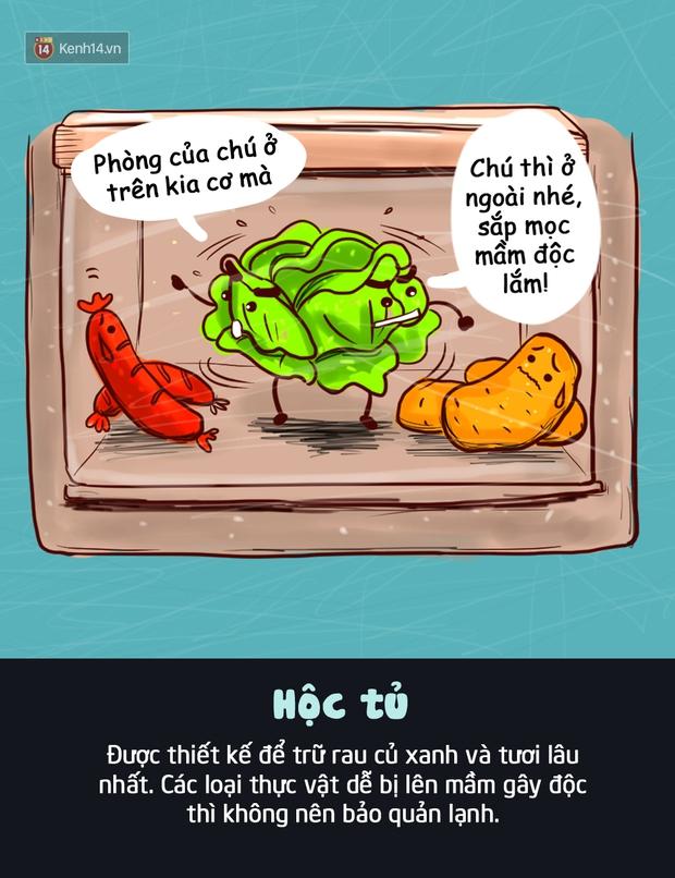 Đây là vị trí bạn nên đặt thực phẩm trong tủ lạnh để giúp chúng tươi ngon lâu nhất - Ảnh 4.