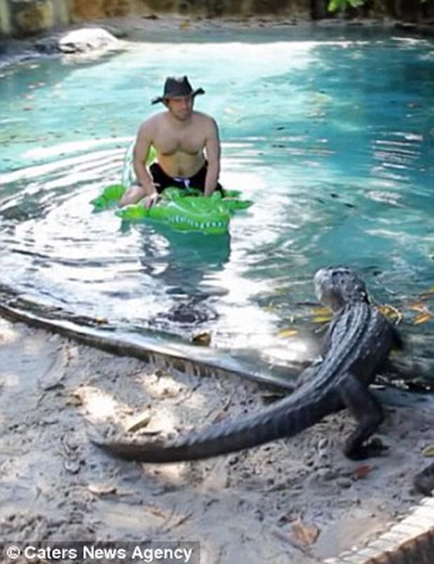 Thanh niên lầy của năm: Một mình ôm phao bơi trong hồ đầy cá sấu - Ảnh 3.