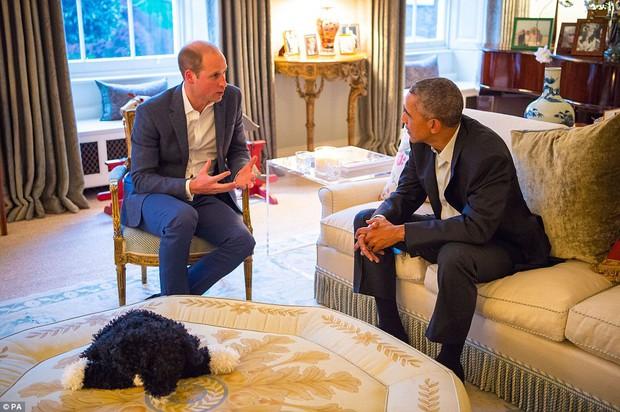 Hoàng tử nhí nước Anh mặc đồ ngủ bắt tay Tổng thống Mỹ Barack Obama - Ảnh 5.