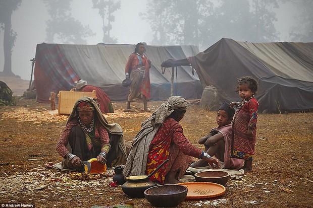 Có 1 bộ tộc nguyên thủy đang đứng bên bờ vực bị xóa sổ vĩnh viễn - Ảnh 6.