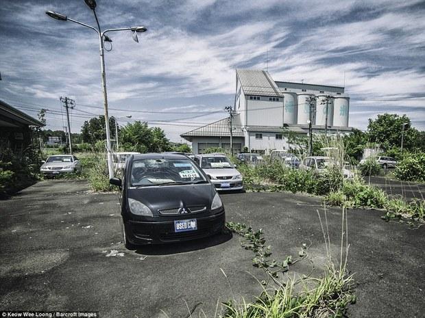 5 năm sau thảm họa phóng xạ, Fukushima còn lại những gì? - Ảnh 8.