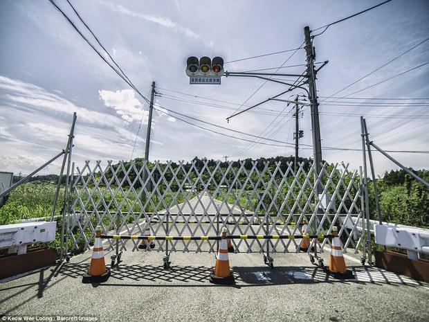 5 năm sau thảm họa phóng xạ, Fukushima còn lại những gì? - Ảnh 10.