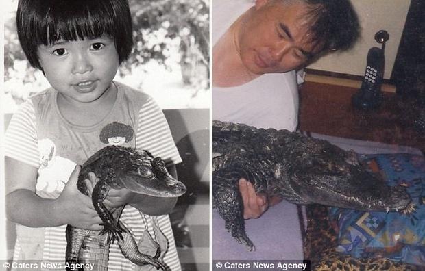 Người đàn ông Nhật Bản coi cá sấu như thú cưng, tắm rửa, đánh răng và dắt nó đi chợ mỗi ngày - Ảnh 10.