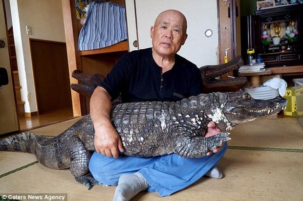 Người đàn ông Nhật Bản coi cá sấu như thú cưng, tắm rửa, đánh răng và dắt nó đi chợ mỗi ngày - Ảnh 6.