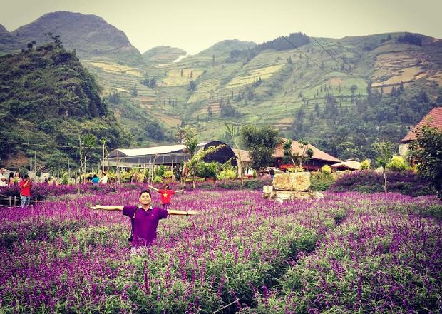 Đồng hoa tím hot nhất Lào Cai: Đẹp thì đẹp thật, nhưng chắc chắn không phải oải hương đâu! - Ảnh 3.