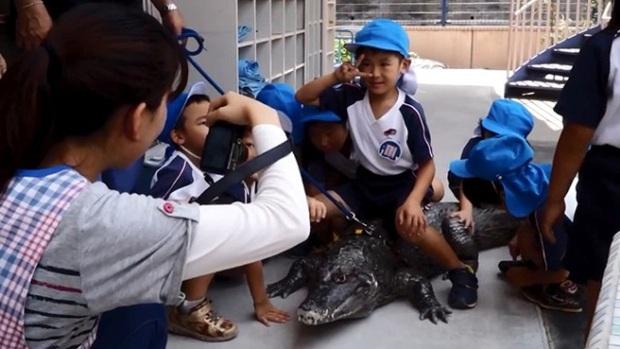 Người đàn ông Nhật Bản coi cá sấu như thú cưng, tắm rửa, đánh răng và dắt nó đi chợ mỗi ngày - Ảnh 5.