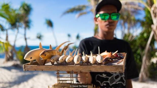 Nhờ có cá mập, đảo ngọc du lịch tại Philippines mới hồi sinh thần kì đến vậy - Ảnh 4.