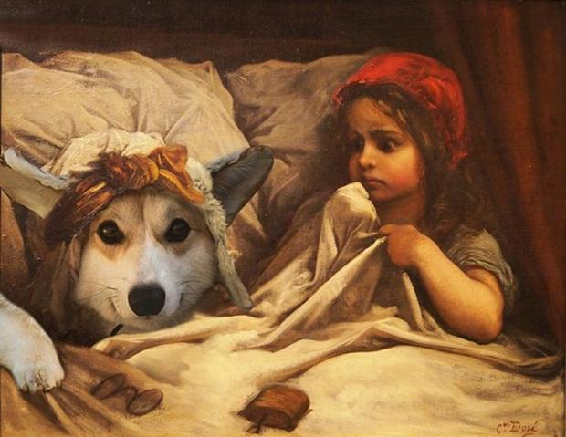 Đội mũ len quá dễ thương, chú chó Corgi đã bị các thánh chế ảnh cho lên thớt - Ảnh 8.