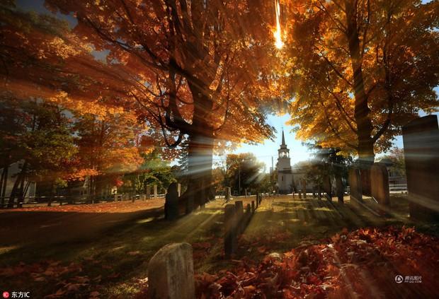 Những bức ảnh thiên nhiên tuyệt đẹp sẽ khiến bạn cảm thấy yêu mùa thu hơn bao giờ hết - Ảnh 5.