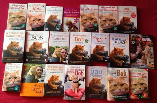 Cứu rỗi chàng nghệ sĩ nghèo vào thời điểm khốn khó nhất, chú mèo vàng trở thành nguồn cảm hứng của cả thế giới - Ảnh 5.