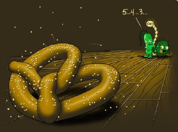 Quên quy tắc 5s đi - vi khuẩn có thể tấn công thực phẩm rơi xuống sàn chưa đầy 1s - Ảnh 3.