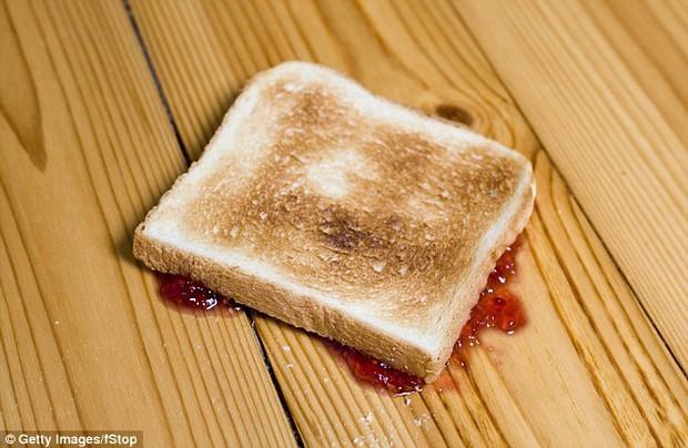 Quên quy tắc 5s đi - vi khuẩn có thể tấn công thực phẩm rơi xuống sàn chưa đầy 1s - Ảnh 4.