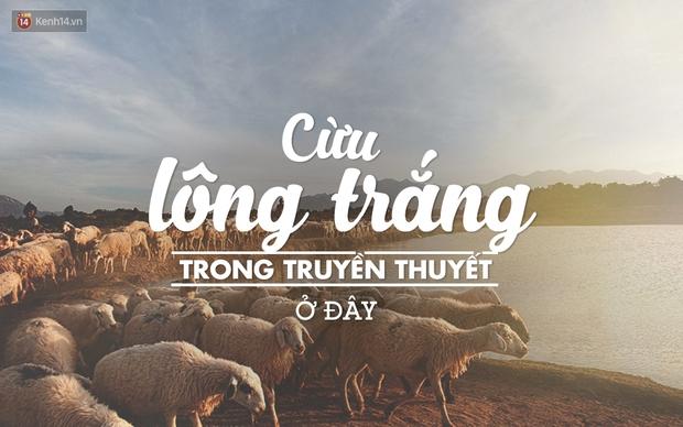 17 trải nghiệm tuyệt vời đang đợi bạn ở Ninh Thuận mùa hè này - Ảnh 6.