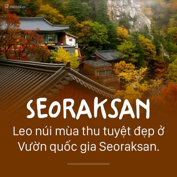 13 địa điểm bạn nhất định phải ghé thăm nếu đi Seoul xuân hè này! - Ảnh 13.