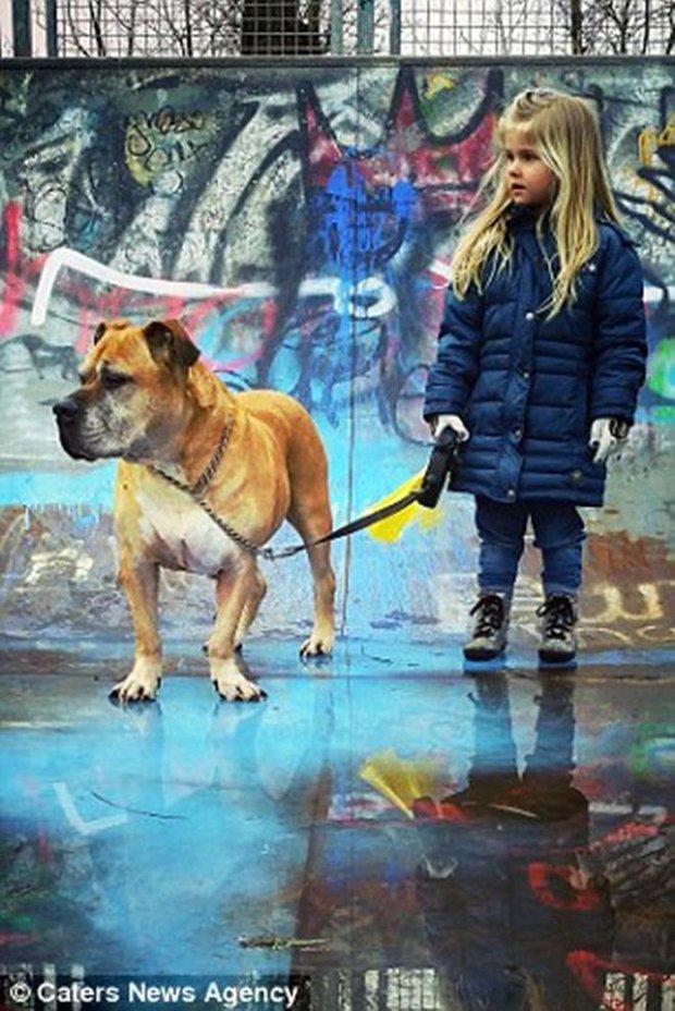 Giây phút vĩnh biệt đầy xúc động của cô bé 6 tuổi với chú chó mù và điếc - Ảnh 5.