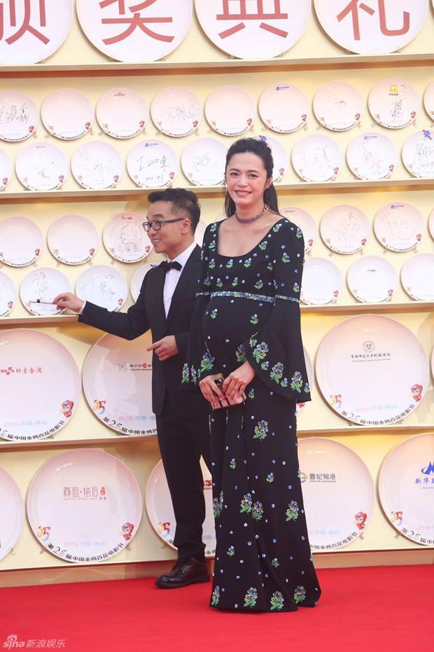 Dàn sao Hoa ngữ tề tựu thảm đỏ LHP Kim Kê Bách Hoa lần thứ 25 - Ảnh 8.