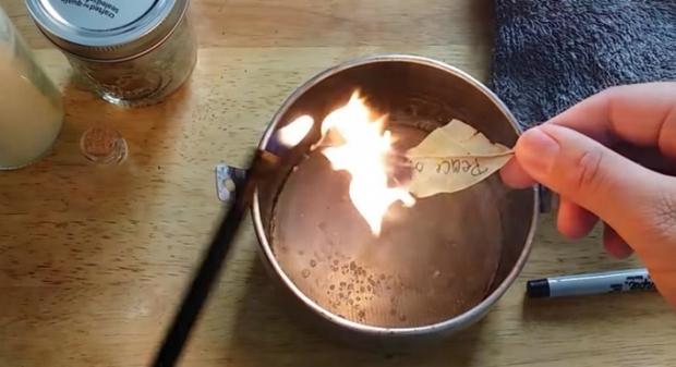 Chỉ cần đốt một chiếc lá này, bạn sẽ có giấc ngủ tuyệt vời - Ảnh 3.