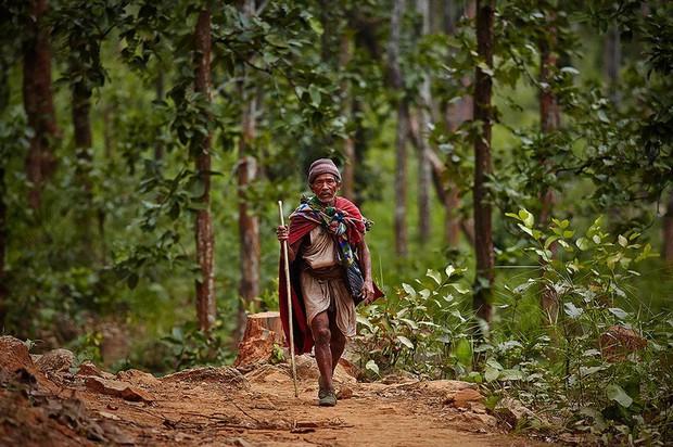 Chùm ảnh: cuộc sống của bộ lạc du mục cuối cùng tại Nepal - Ảnh 3.