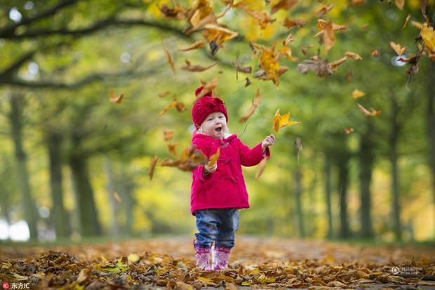 Những bức ảnh thiên nhiên tuyệt đẹp sẽ khiến bạn cảm thấy yêu mùa thu hơn bao giờ hết - Ảnh 9.