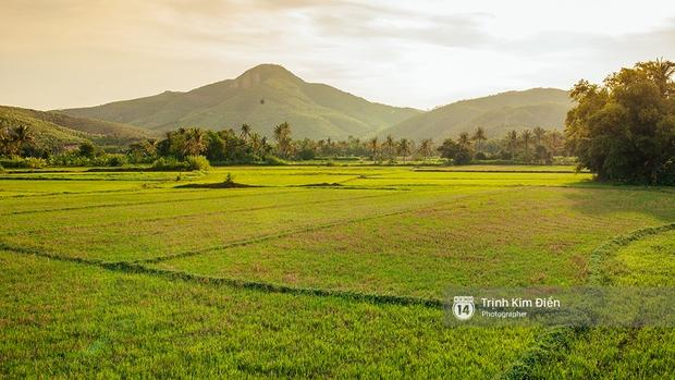Hãy đến những nơi này để thấy Phú Yên còn đẹp hơn những gì bạn thấy trong hoa vàng cỏ xanh - Ảnh 28.