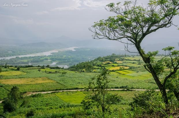 Hãy đến những nơi này để thấy Phú Yên còn đẹp hơn những gì bạn thấy trong hoa vàng cỏ xanh - Ảnh 9.