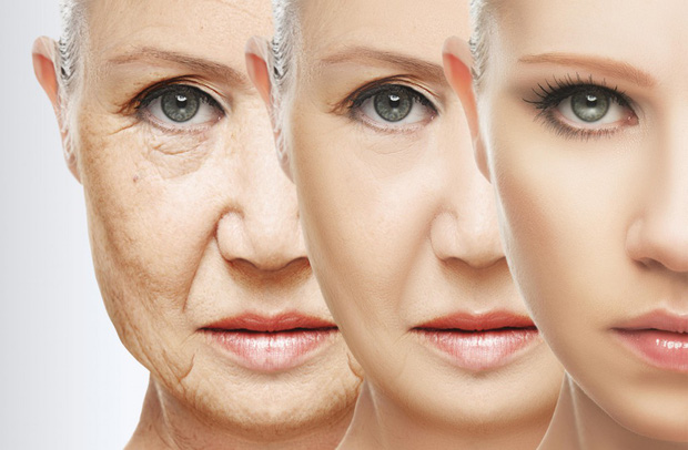 Đột phá: Con người đang biến cải lão hoàn đồng thành sự thật - Ảnh 1.