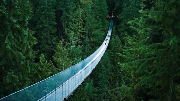 20 cây cầu có thiết kế ngoạn mục khiến bạn phải thốt lên: Kỳ quan đây rồi! - Ảnh 1.