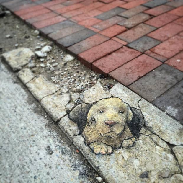 Phòng tranh nghệ thuật đường phố đầy sáng tạo của họa sĩ David Zinn - Ảnh 8.