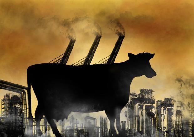 Giải pháp đột phá nhằm giảm bớt 90% lượng khí đang khiến Trái đất nóng lên từng ngày - Ảnh 1.