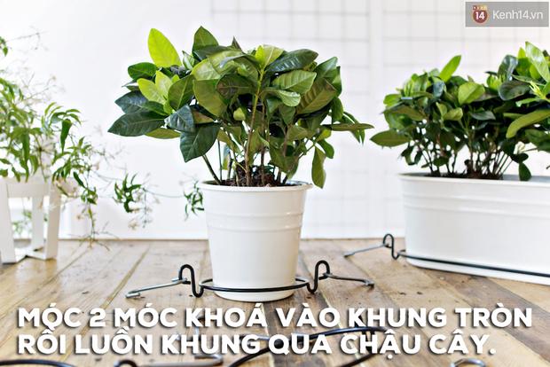 Biến vườn nhà bạn đẹp như quán cà phê chỉ trong một nốt nhạc - Ảnh 4.