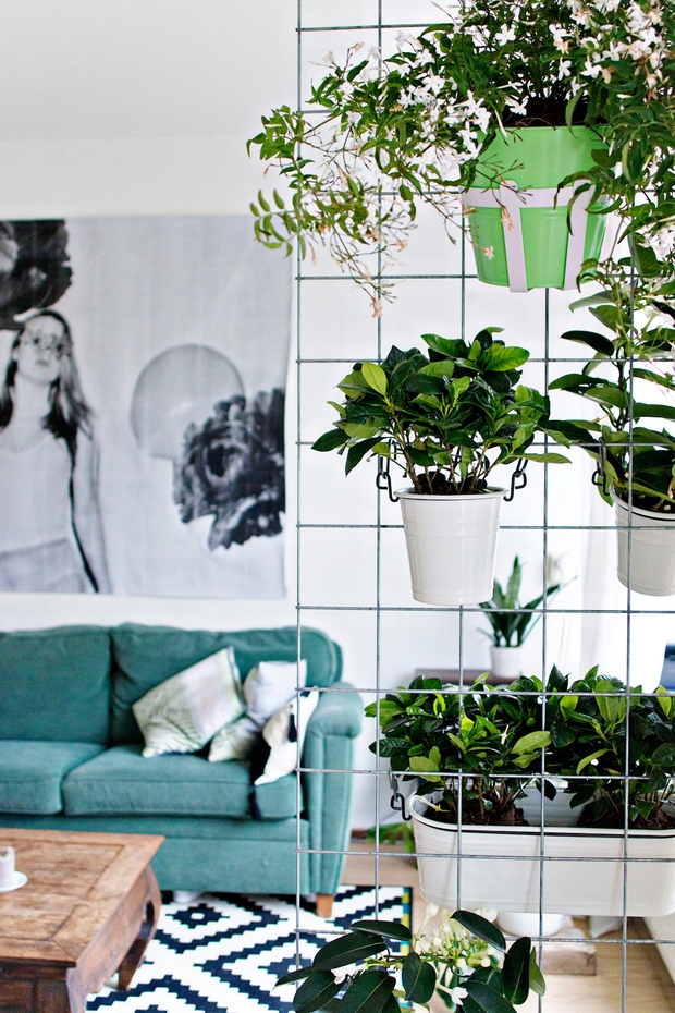 Biến vườn nhà bạn đẹp như quán cà phê chỉ trong một nốt nhạc - Ảnh 7.