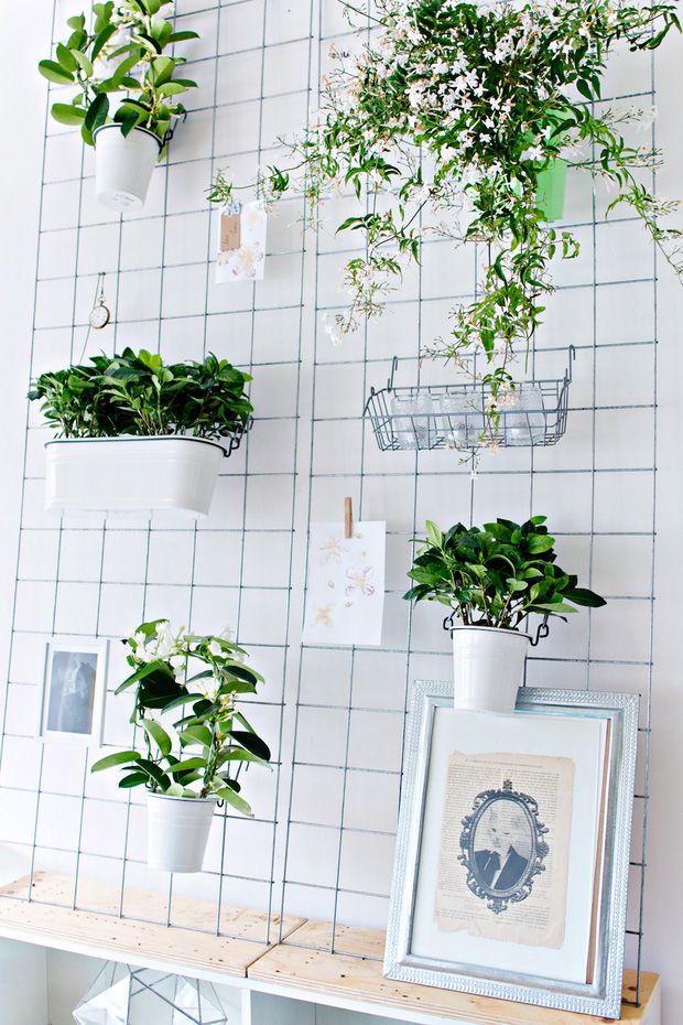 Biến vườn nhà bạn đẹp như quán cà phê chỉ trong một nốt nhạc - Ảnh 10.