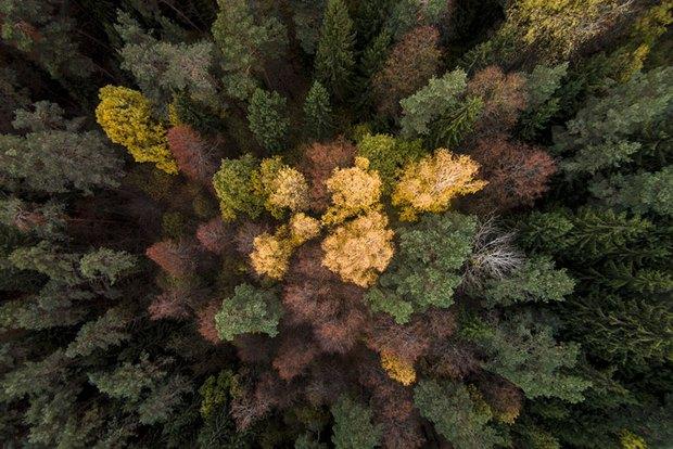 Lộ diện bộ sưu tập các bức ảnh chụp từ drone xuất sắc nhất 2016 - Ảnh 12.