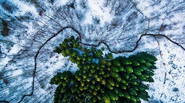 Lộ diện bộ sưu tập các bức ảnh chụp từ drone xuất sắc nhất 2016 - Ảnh 4.