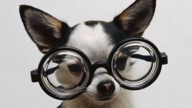 Người trẻ ngày nay mắc thói quen khiến cho cả một thế hệ phải đeo kính dày cộp - Ảnh 1.