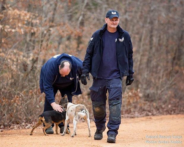 Lão Hạc vô gia cư thời hiện đại đau xót khi phải rời bỏ 31 chú chó cưng - Ảnh 4.