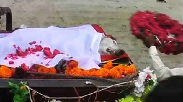 Ấn Độ: Cả làng làm đám ma cho chú chó đã từng gắn bó với người dân suốt 27 năm - Ảnh 2.