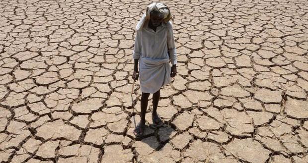 Ấn Độ: 454 người tự tử vì nắng nóng kinh hoàng kéo dài - Ảnh 1.