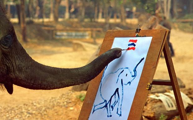 Câu chuyện đau lòng đằng sau những con voi hiền hòa tại Thái Lan - Ảnh 5.
