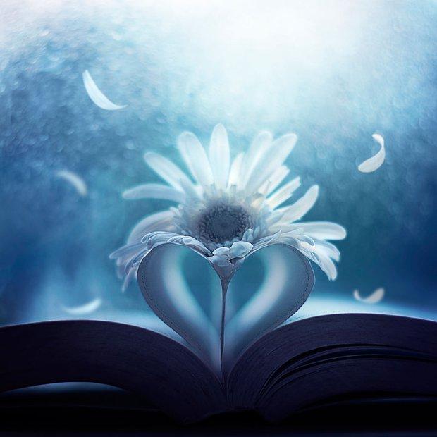Bộ ảnh vũ điệu loài hoa tuyệt đẹp dành cho người yêu thiên nhiên - Ảnh 13.