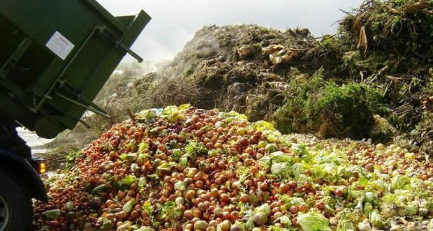 Trong khi bao người nghèo đang chết đói, người ta vẫn vô tư vứt đồ ăn đầy lãng phí - Ảnh 2.