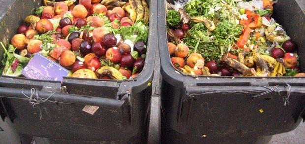 Trong khi bao người nghèo đang chết đói, người ta vẫn vô tư vứt đồ ăn đầy lãng phí - Ảnh 6.