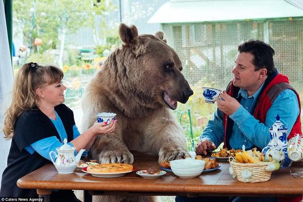 Thanh niên gấu 23 tuổi sống chung và làm việc nhà giúp đôi vợ chồng già - Ảnh 2.