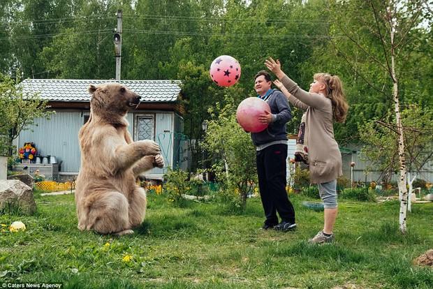 Thanh niên gấu 23 tuổi sống chung và làm việc nhà giúp đôi vợ chồng già - Ảnh 8.