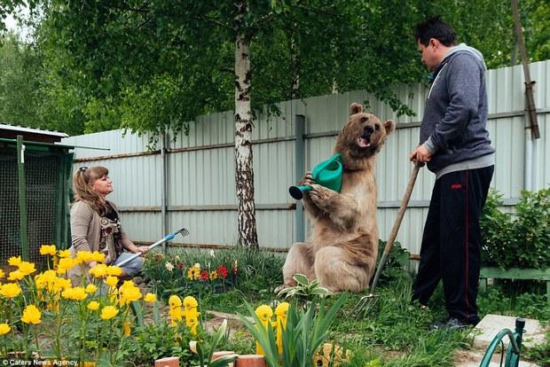 Thanh niên gấu 23 tuổi sống chung và làm việc nhà giúp đôi vợ chồng già - Ảnh 9.