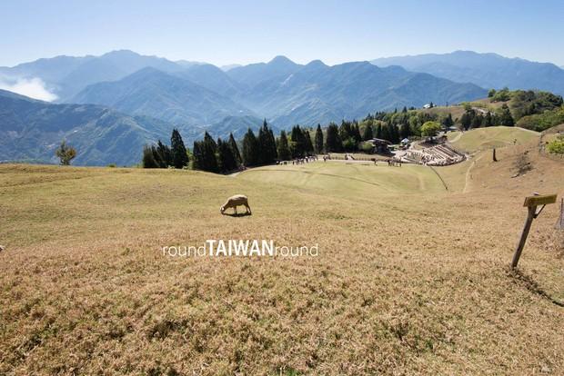 Đi đâu - Chơi gì ở Đài Loan để không bỏ lỡ những thứ hay ho nhất! - Ảnh 8.