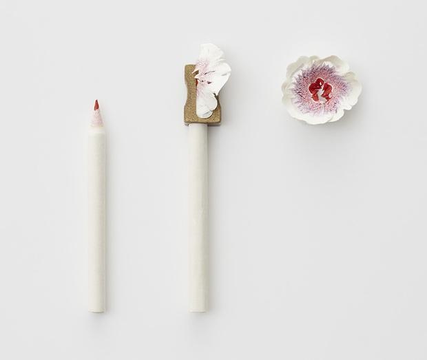 Ngắm vườn hoa xinh đẹp trổ bông từ vỏ gọt bút chì - Ảnh 2.